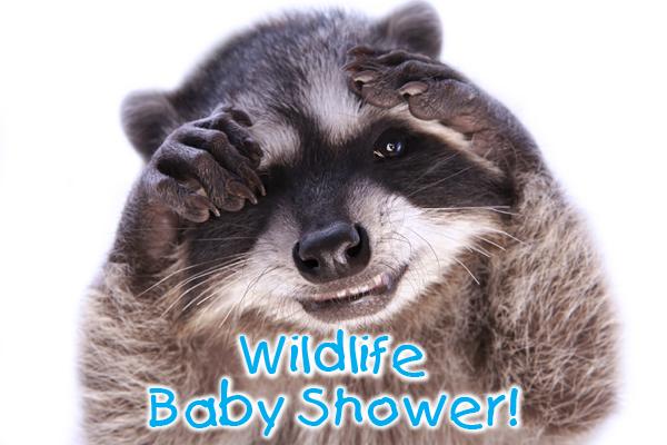 Wildlife Baby Shower