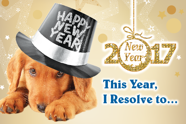 pet-new-years-resolutions