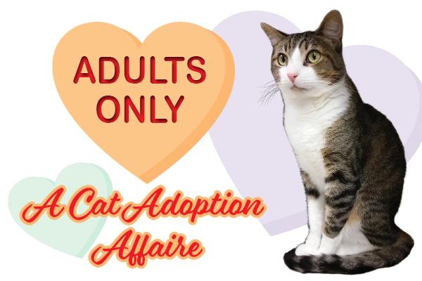 Cat Adoption Affaire