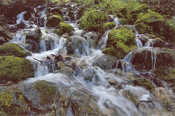 Falls Loop Geology Trek