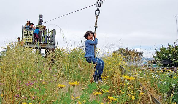 Berkeley Waterfront and Playground